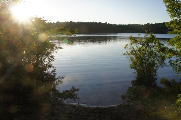 Joshua's Pond