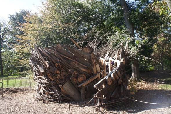 Hurricane Sandy fallen tree fort